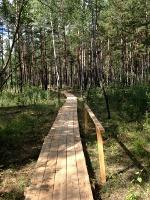 Eco-trail Yangima