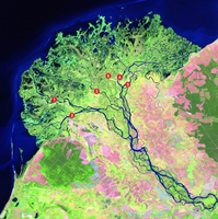 Selenga Delta - water quality