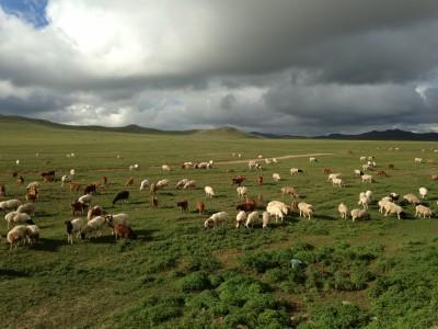 Байгаль нуурын төсөлд хамрагдсан газар нутаг. Монголын тал нутаг. Диваажин. - зураг авсан С.Куделя (800x600).jpg