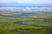 Сэлэнгэ мөрний адаг орчмын усны чанарын судалгааны мониторинг
