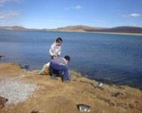 Мероприятия по уборке береговых линий 2013 (Монголия)