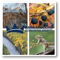 Разработка эко-туристического пакета для Байкальского государственного природного биосферного заповедника